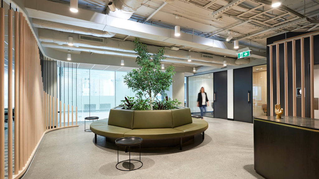 Kyko Group Speculative Fitout project image